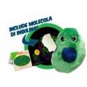 Microbi cellula beta con insulina