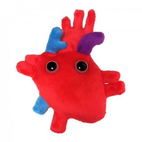 Cuore anatomico peluche microbi giganti