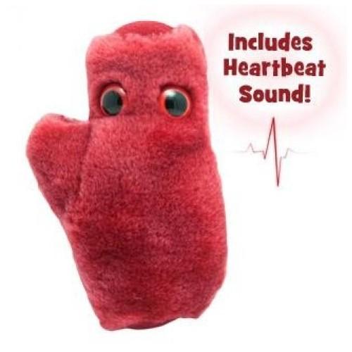 Peluche cardiomiocita cellula cardiaca