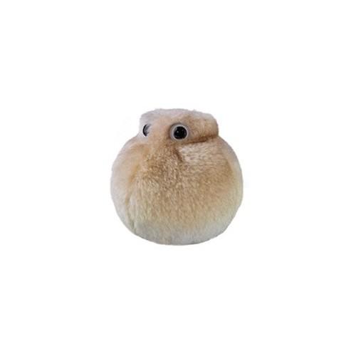 Microbi Giganti GRASSO cellula adiposa