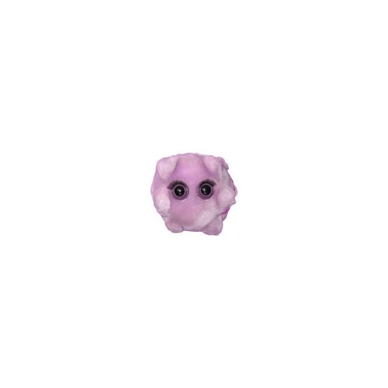 Microbi Giganti MONONUCLEOSI malatia del bacio
