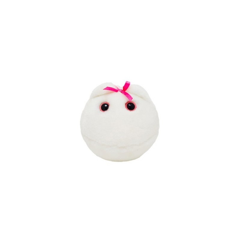 Microbi Giganti OVULO cellula uovo