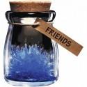 Cristallo dei desideri coltivabile in vetro