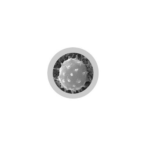 Microbi Super Giganti Globulo Bianco 39 x 24 x 35 cm circa