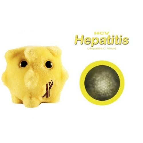 Microbi Giganti Epatite