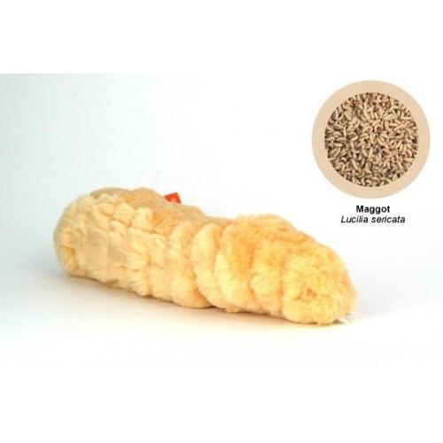 Microbi Giganti Larva