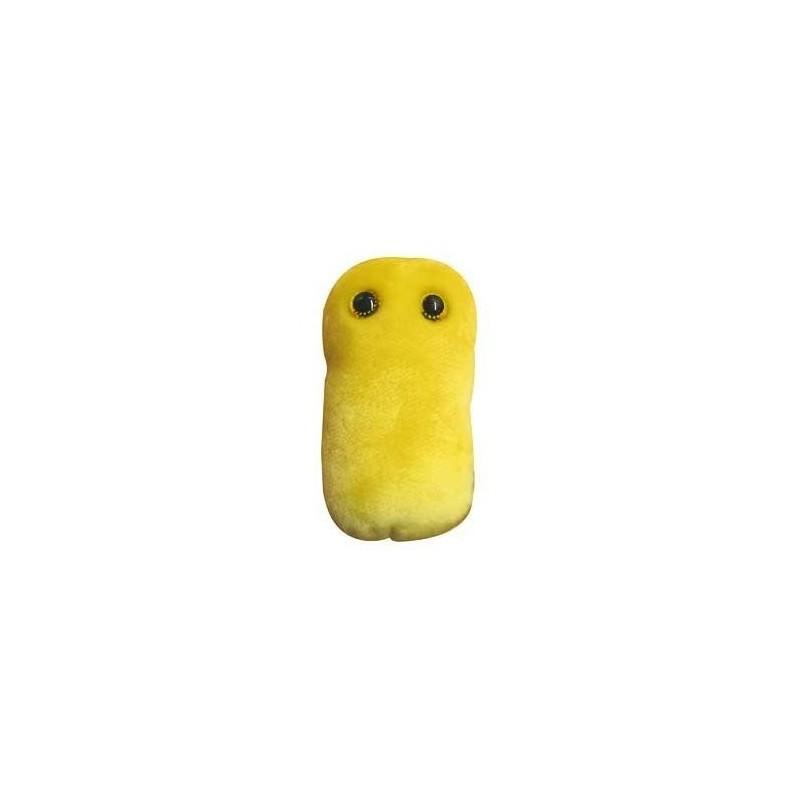 Microbi Giganti Tosse