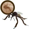 Zanzara Peluche