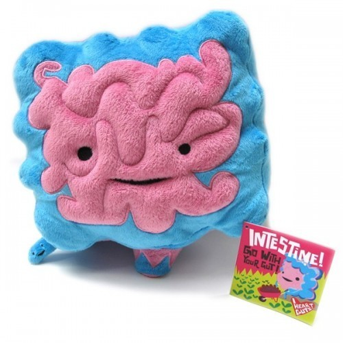 Peluche Intestino Organi Interni Big