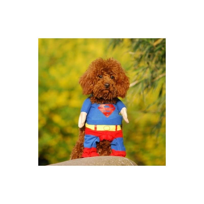 Abito Superman Cane in Cotone