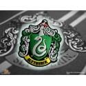 Harry Potter magnete frigo logo Serpeverde