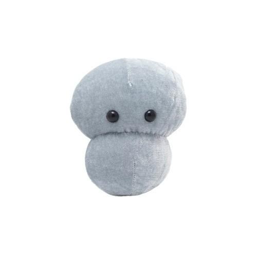 Microbi Giganti Meningite