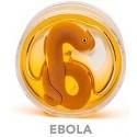 Melma Viscida Microbi Ebola